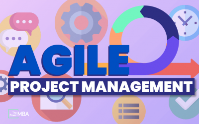 The Apprentice's Handbook to Agile Project Management