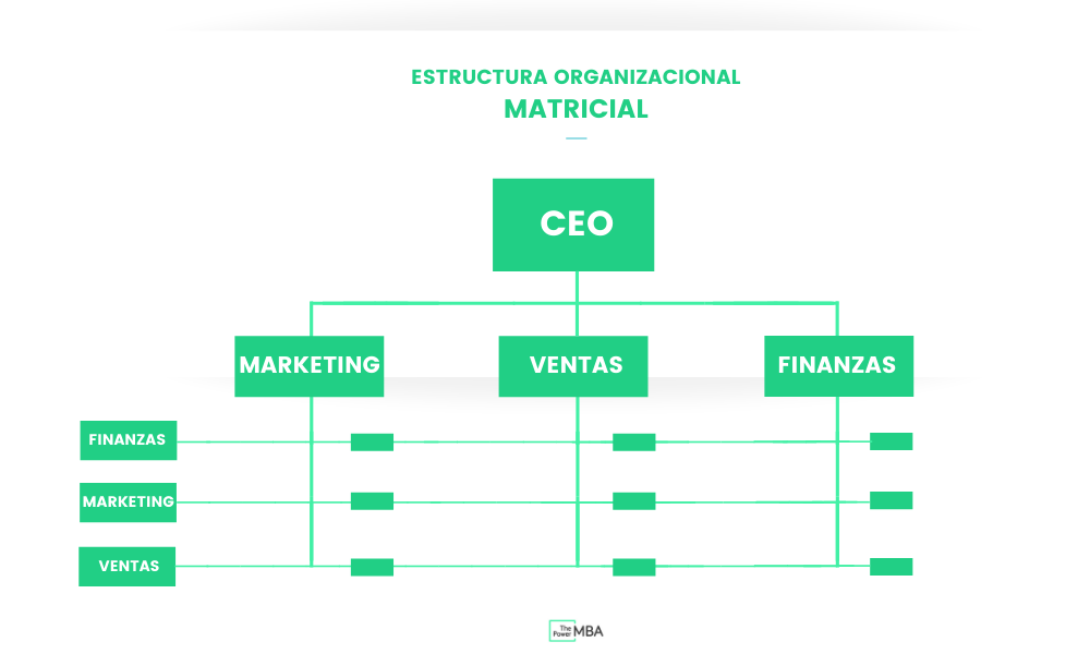 estructural organizacional matricial